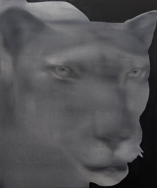 jingze du cougar